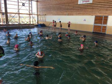 Cycle de piscine pour les CE2/CM1 et CM1/CM2